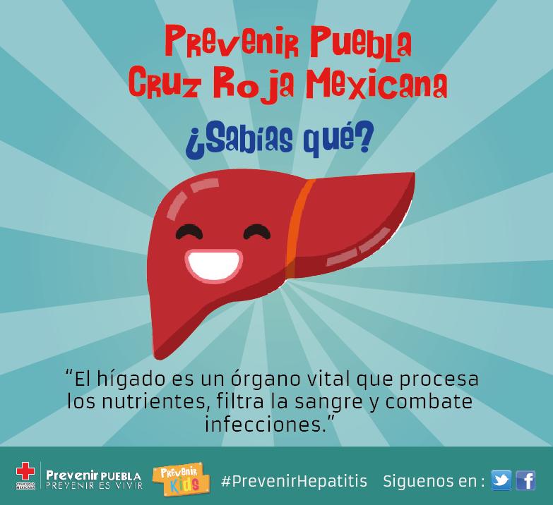 Prevenir Puebla Prevenir Es Vivir