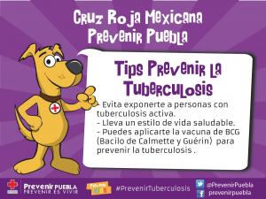tips tuberculosis-01